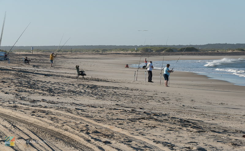 Outer banks beach guide for Outer banks surf fishing