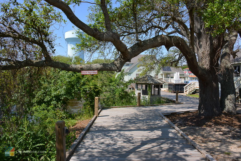 Low clearance under a live oak at Duck Town Boardwalk