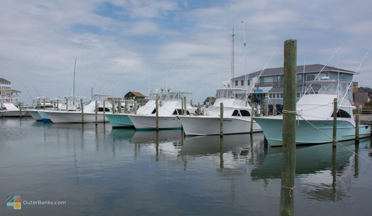 Fishing boats, many for hire