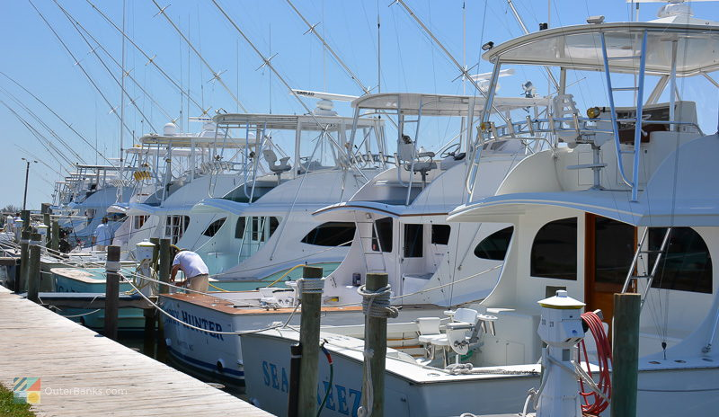 Many Fishing Charters leave from Oregon Inlet Fishing Center