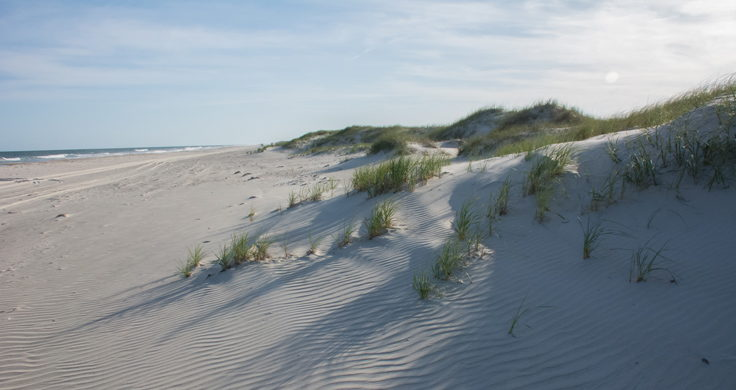 Portsmouth Island's wide-open beach