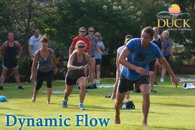 Dynamic Flow Fitness on the Green