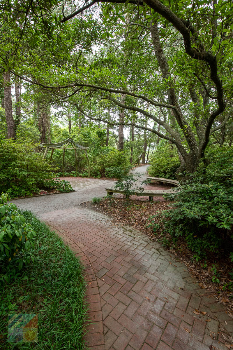 Outer Banks Arboretum and Teaching Garden