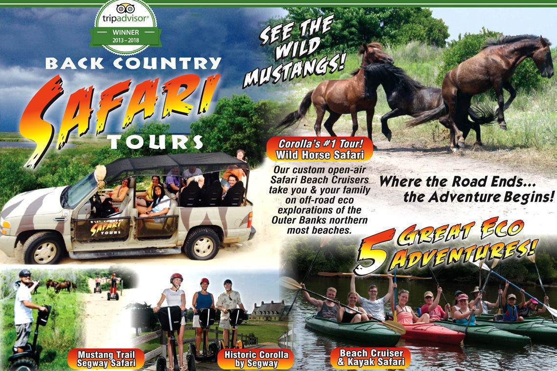 Updated Sun Country Tours Coupon Codes November 12222