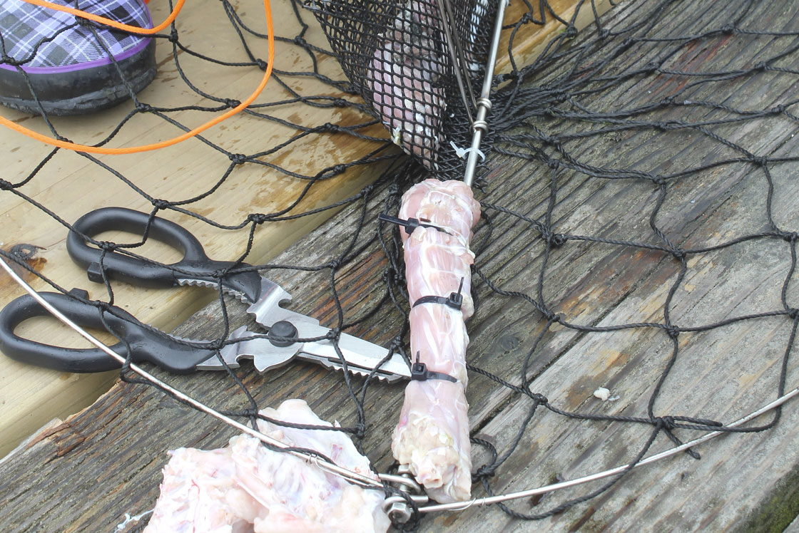 Crabbing - OuterBanks.com