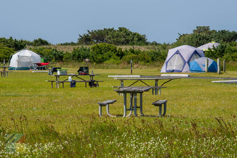 A tent site in Cape Hatteras National Seashore (Buxton)