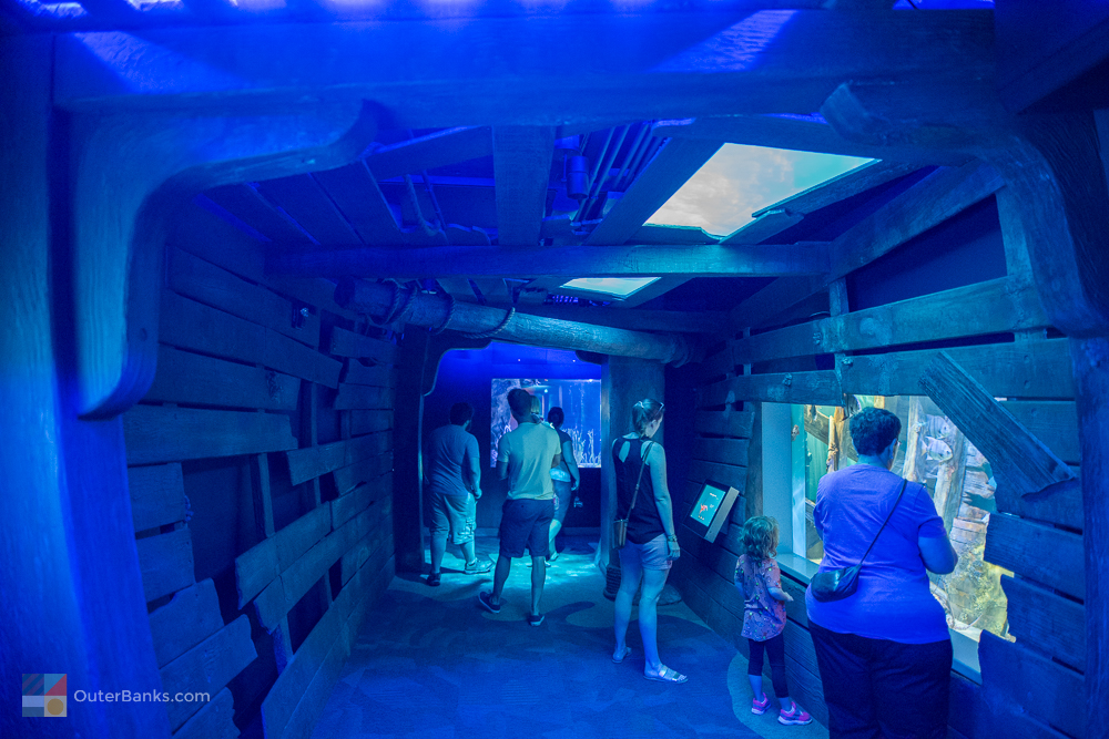 The Aquarium Is Open Daily From 900 Am To 500 Pm All Year Long And Offers Special Rates For Children There Also A Gift Shop So Kids Can Bring