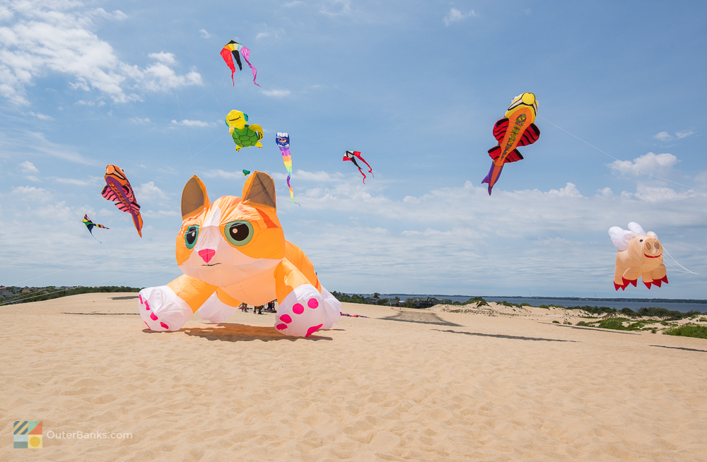Kites fly at Jockey's Ridge State Park