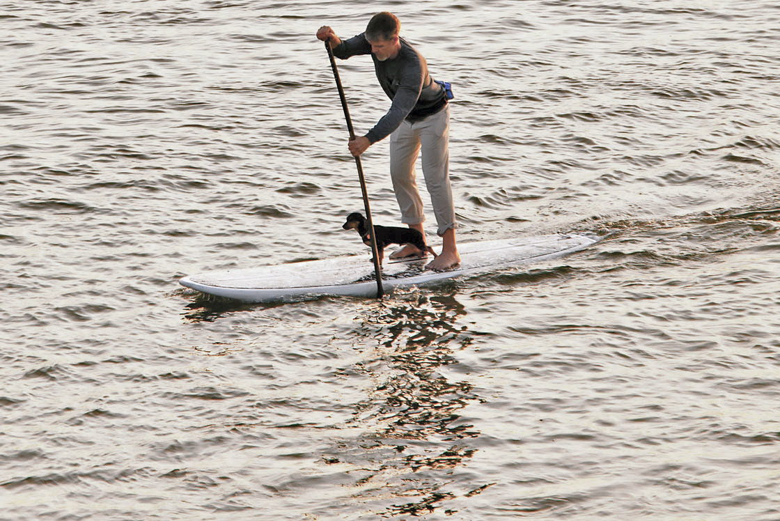 Stand-Up Paddle Boarding (SUP) - OuterBanks.com