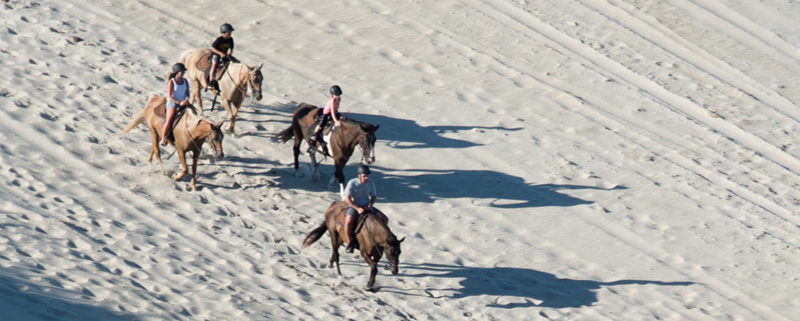 Horseback riding on the beach in Nags Head, NC